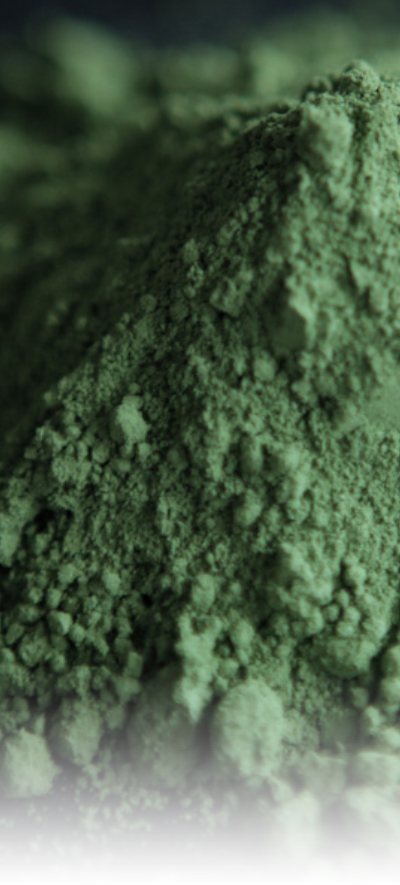 nopal-powder-img-side